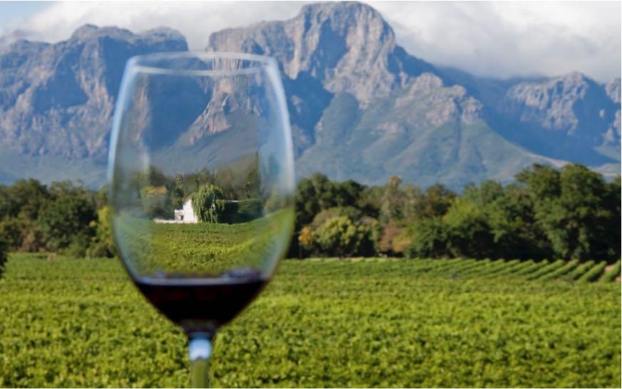 Cape Town Wine Tasting.jpg