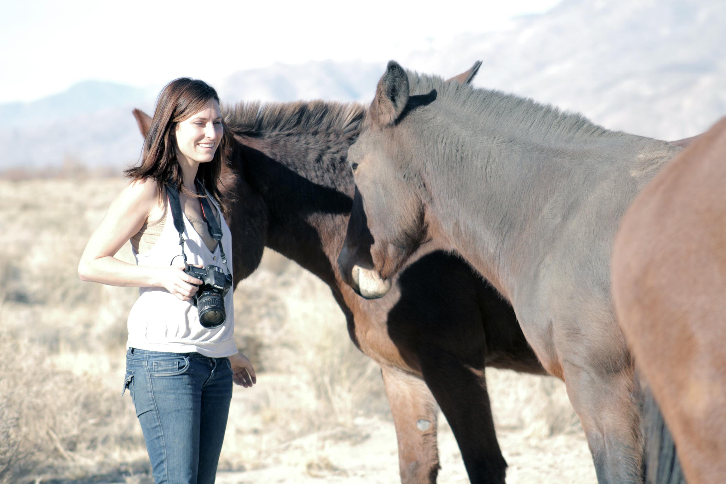 HORSES_KERRY.jpg