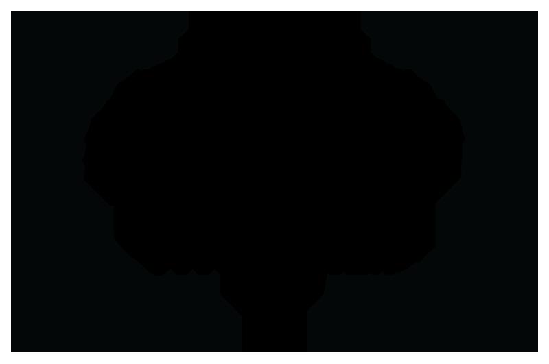 NEWURBANISMFILMFESTIVAL-BESTHEALTHYCITIESFILM-2017_SMALLER.png