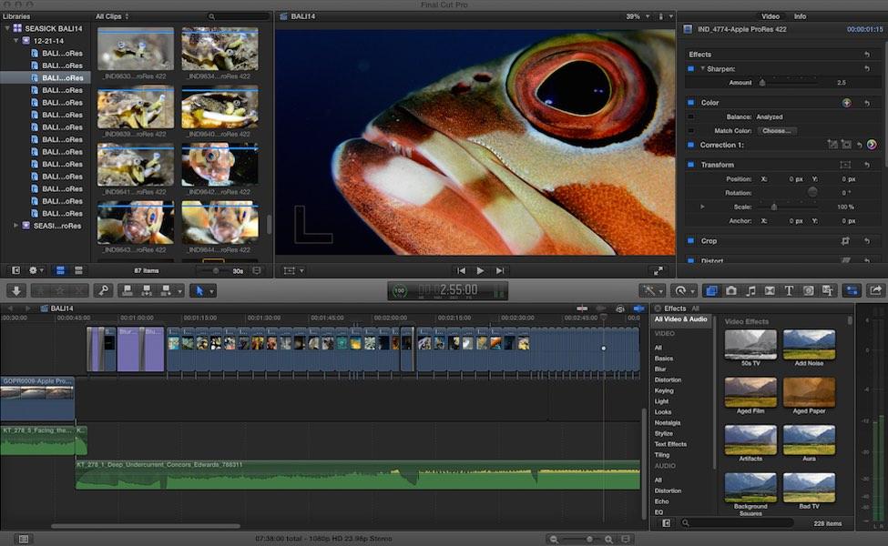 SEASICK WEB Video Post Production.jpg