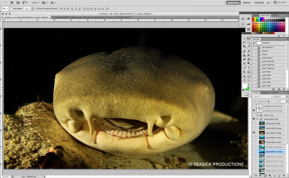 SEASICK WEB Photo Post Production