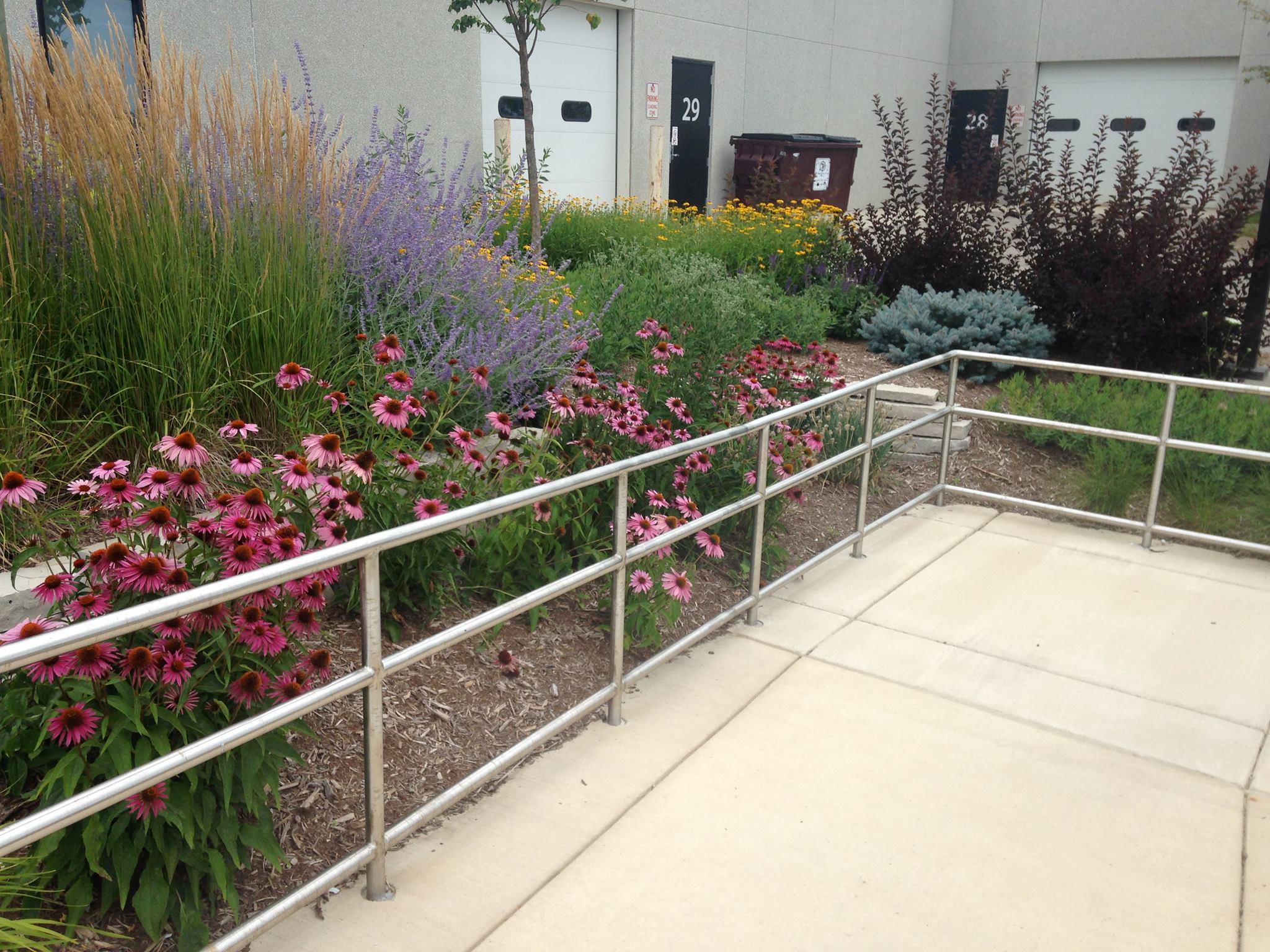 Commercial and Institutional Landscape Design