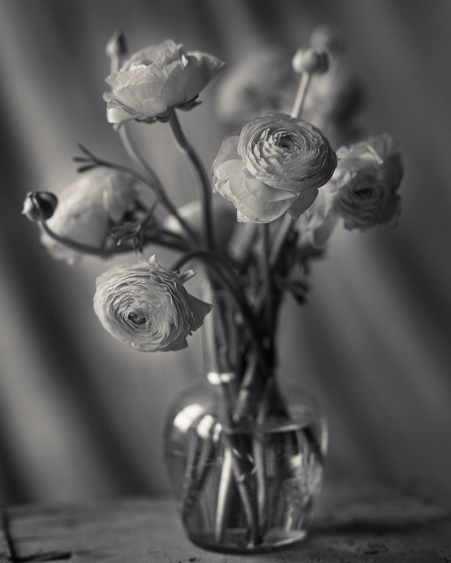 Flower8x10001.jpg
