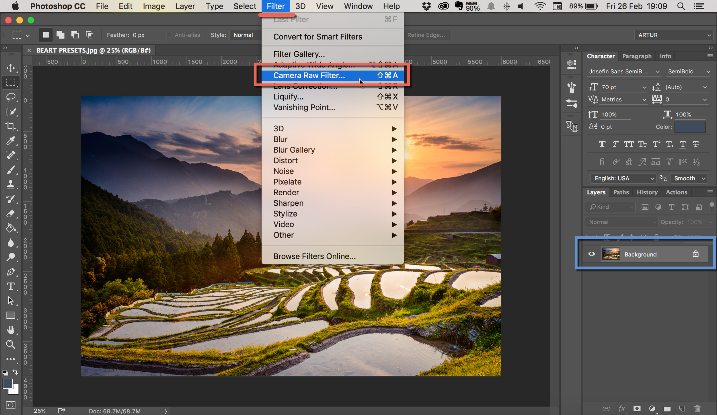 install camera raw presets in photoshop