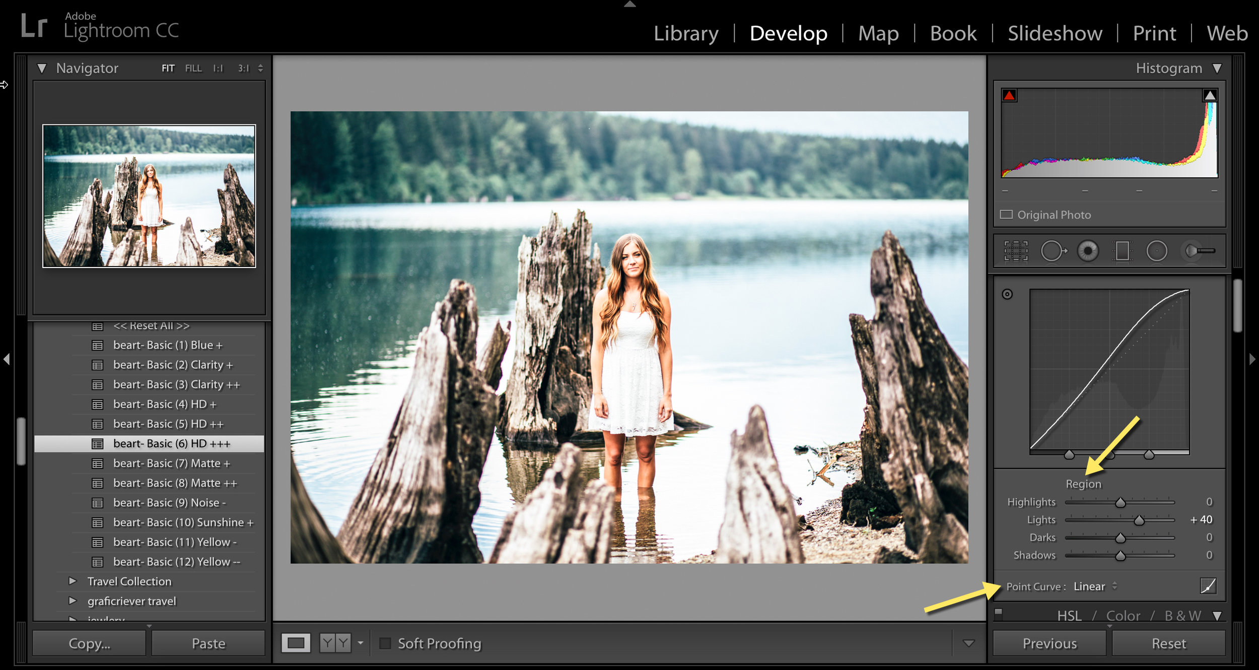 point curve and region in lightroom