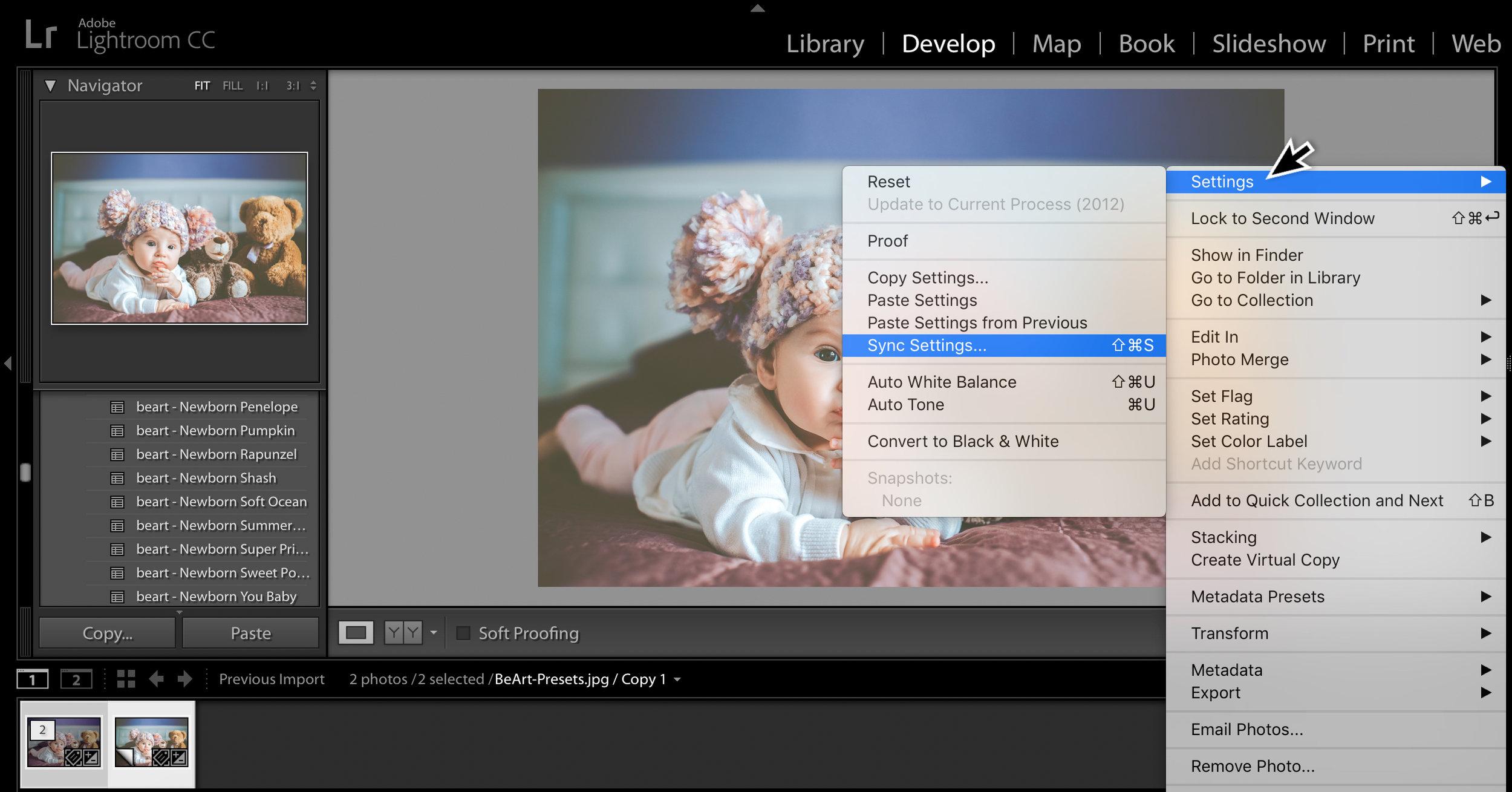 sync settings in lightroom options.jpg