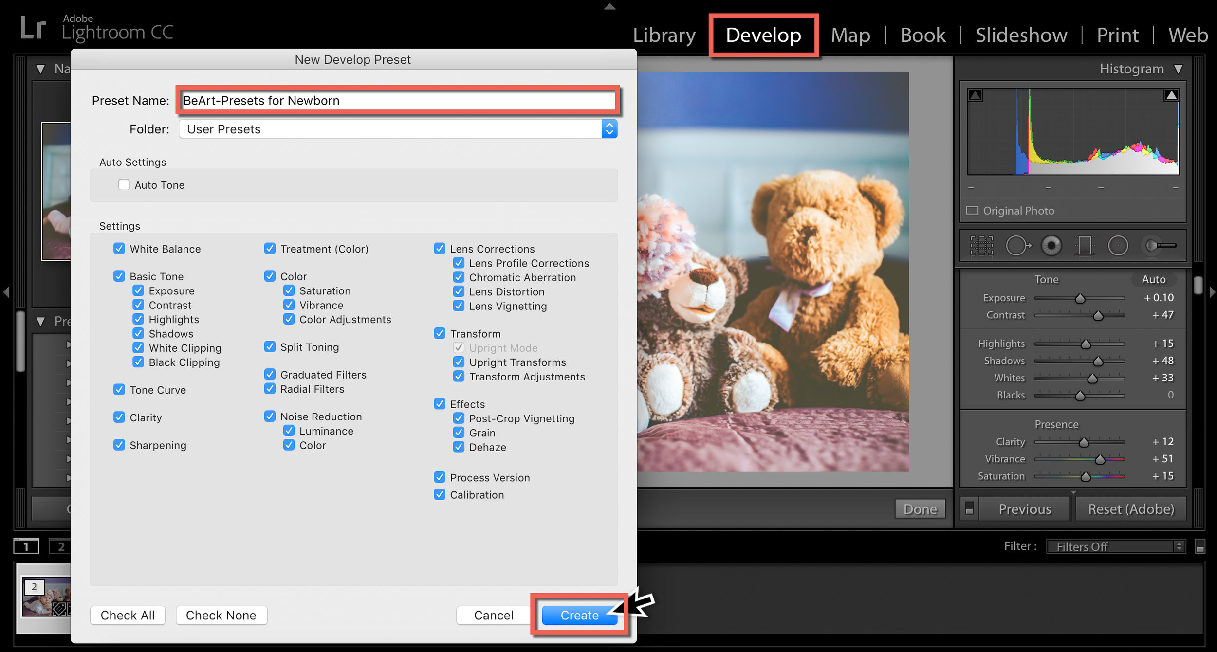 presets for lightroom by heart