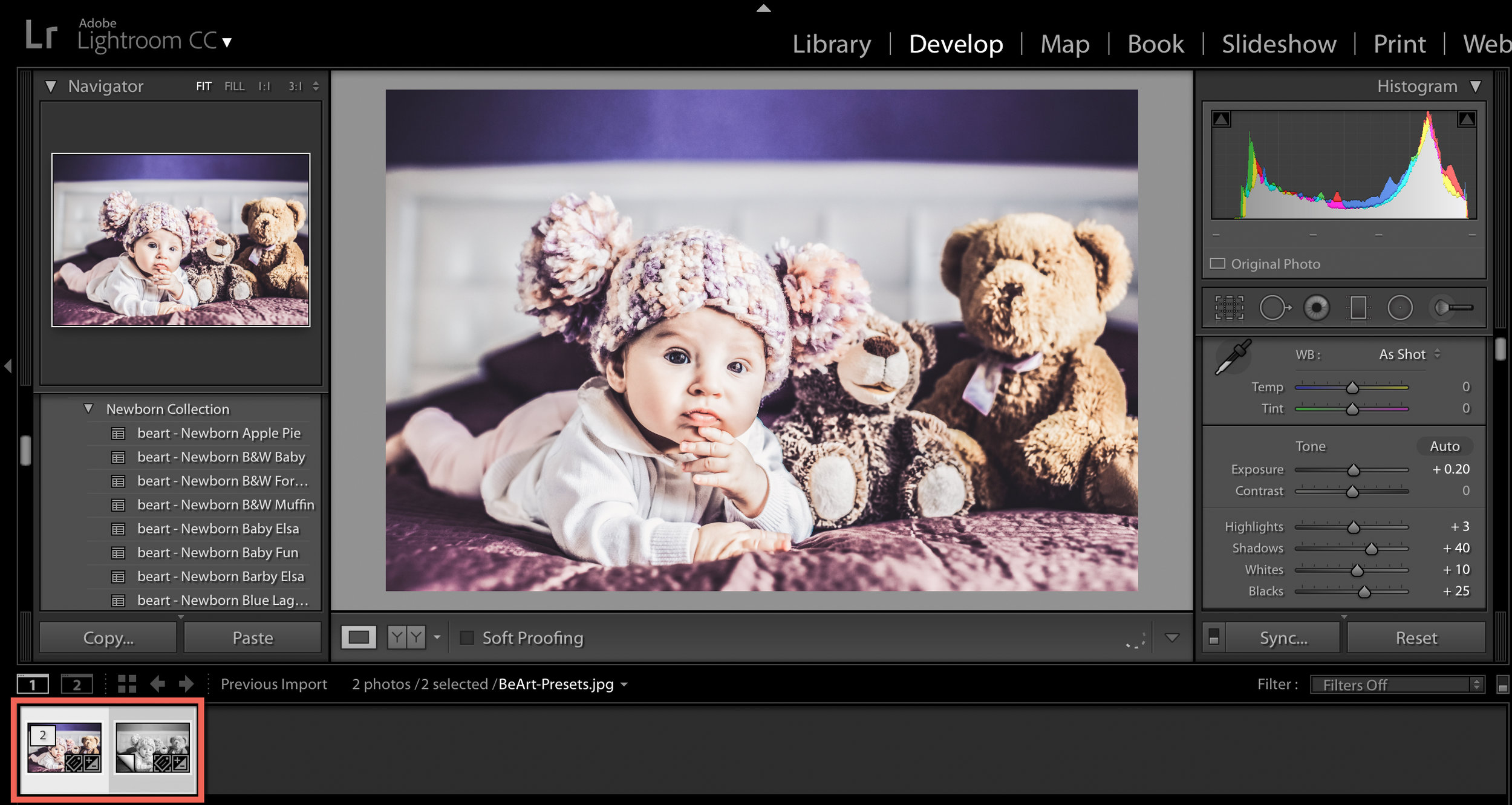 duplicate images in lightroom.jpg
