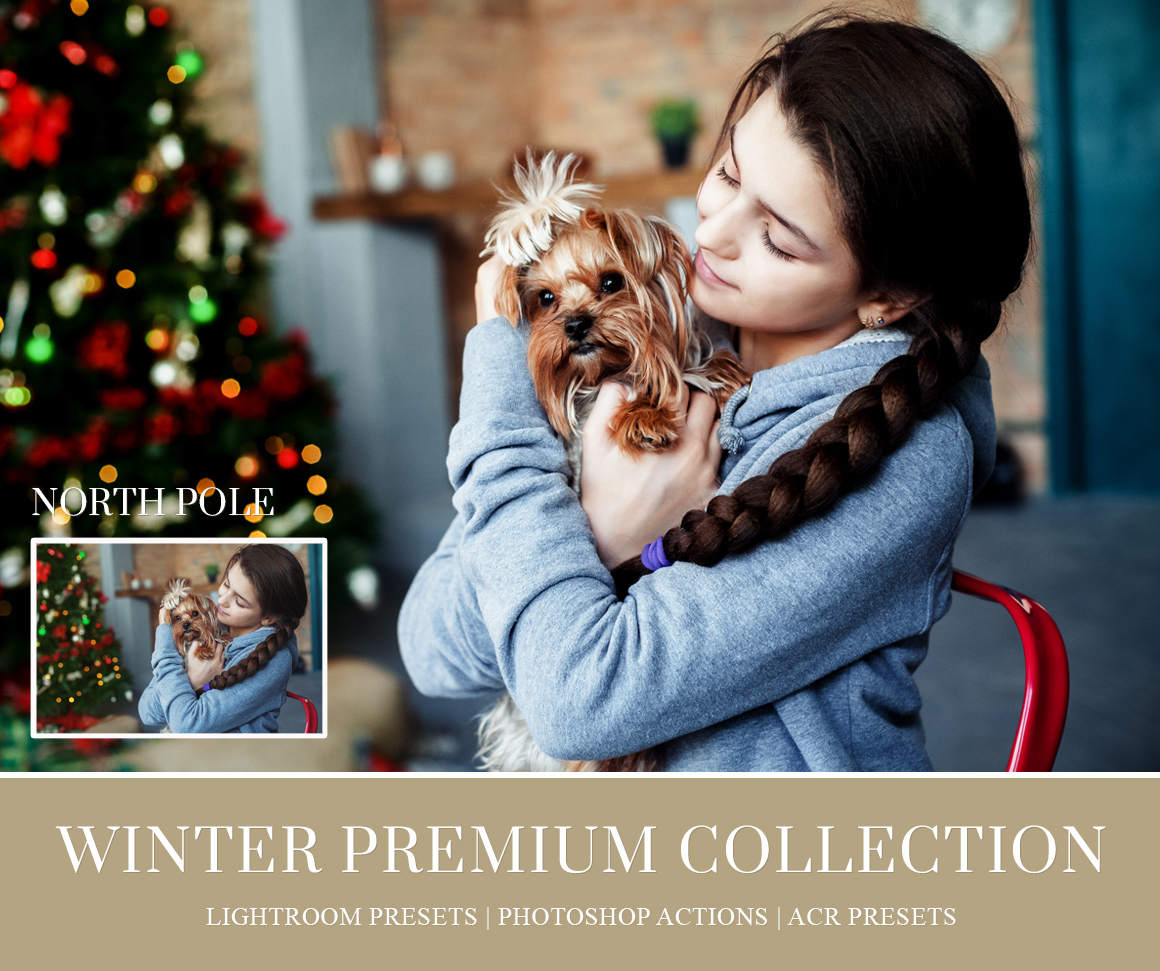 christmas-mini-sessions-photography-lightroom-presets.jpg