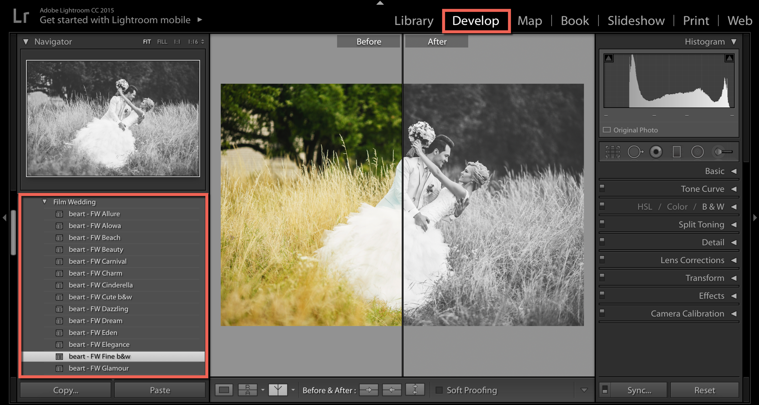 use wedding lightroom presets by beart-presets