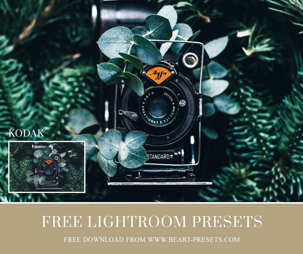 Film Lightoom presets free download