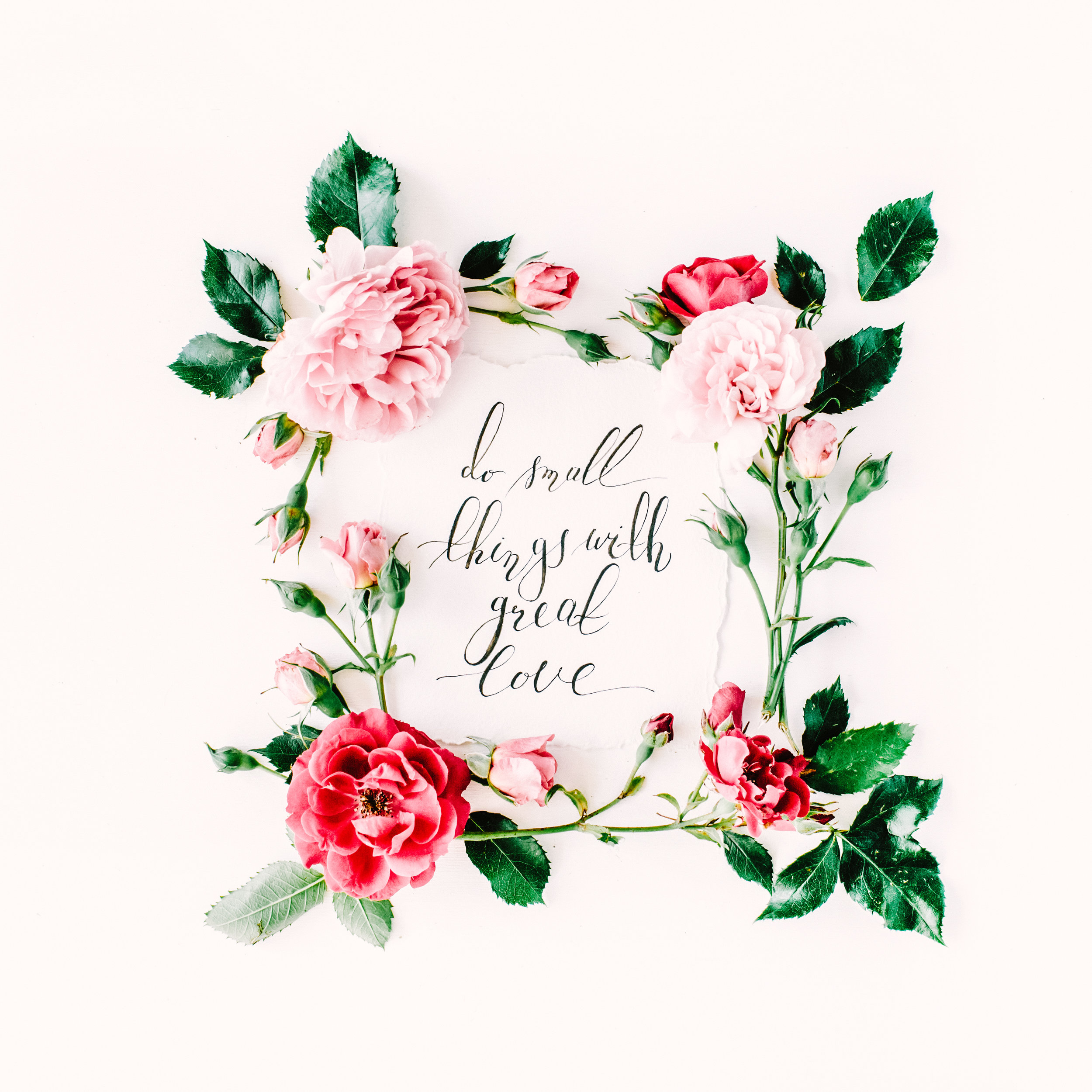 """inspirational quote """"what is done in love is done well"""" written in calligraphy style on paper with pink red roses chamomiles and leaves isolated on white background. Flat lay top view"""