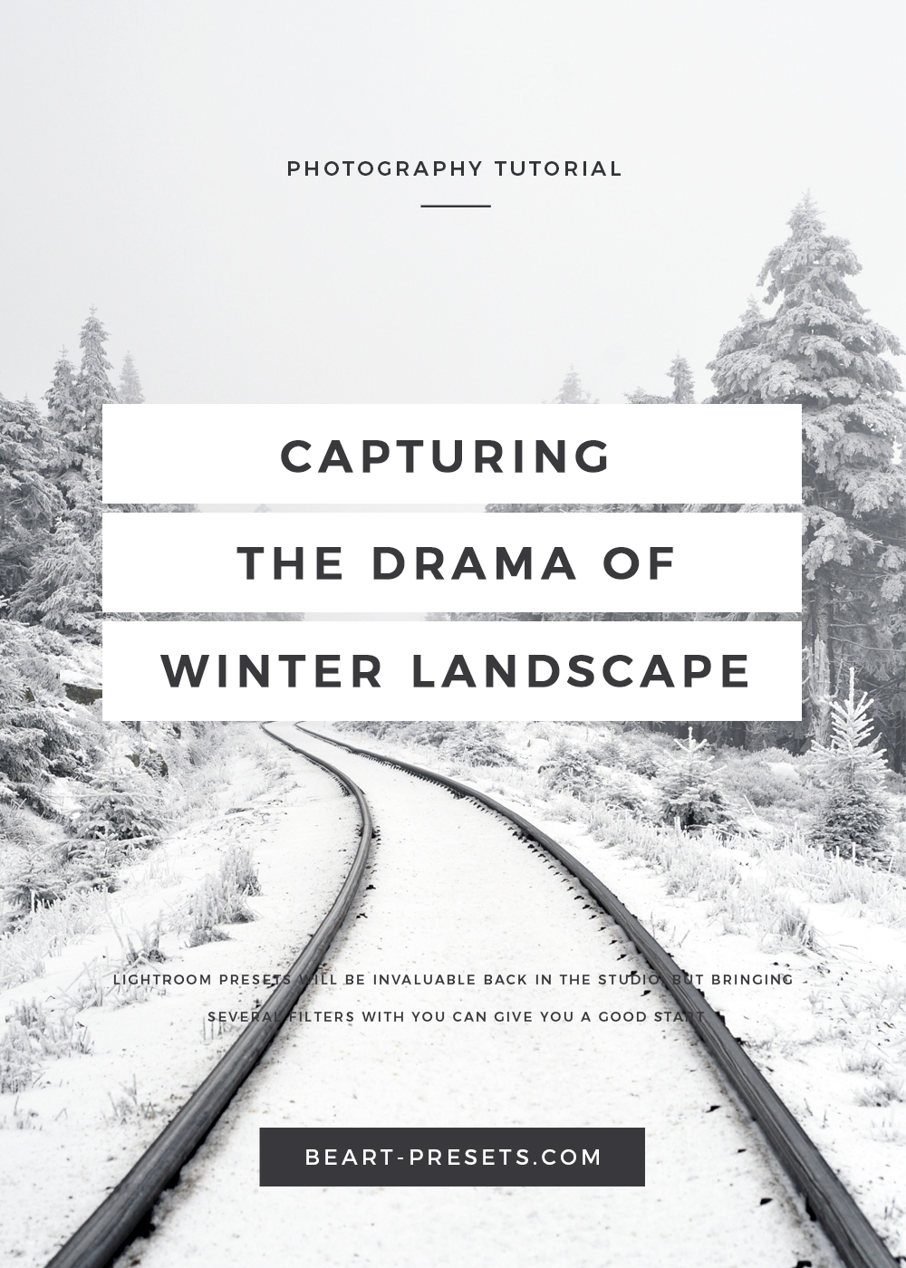 capturing the drama of winter landscape
