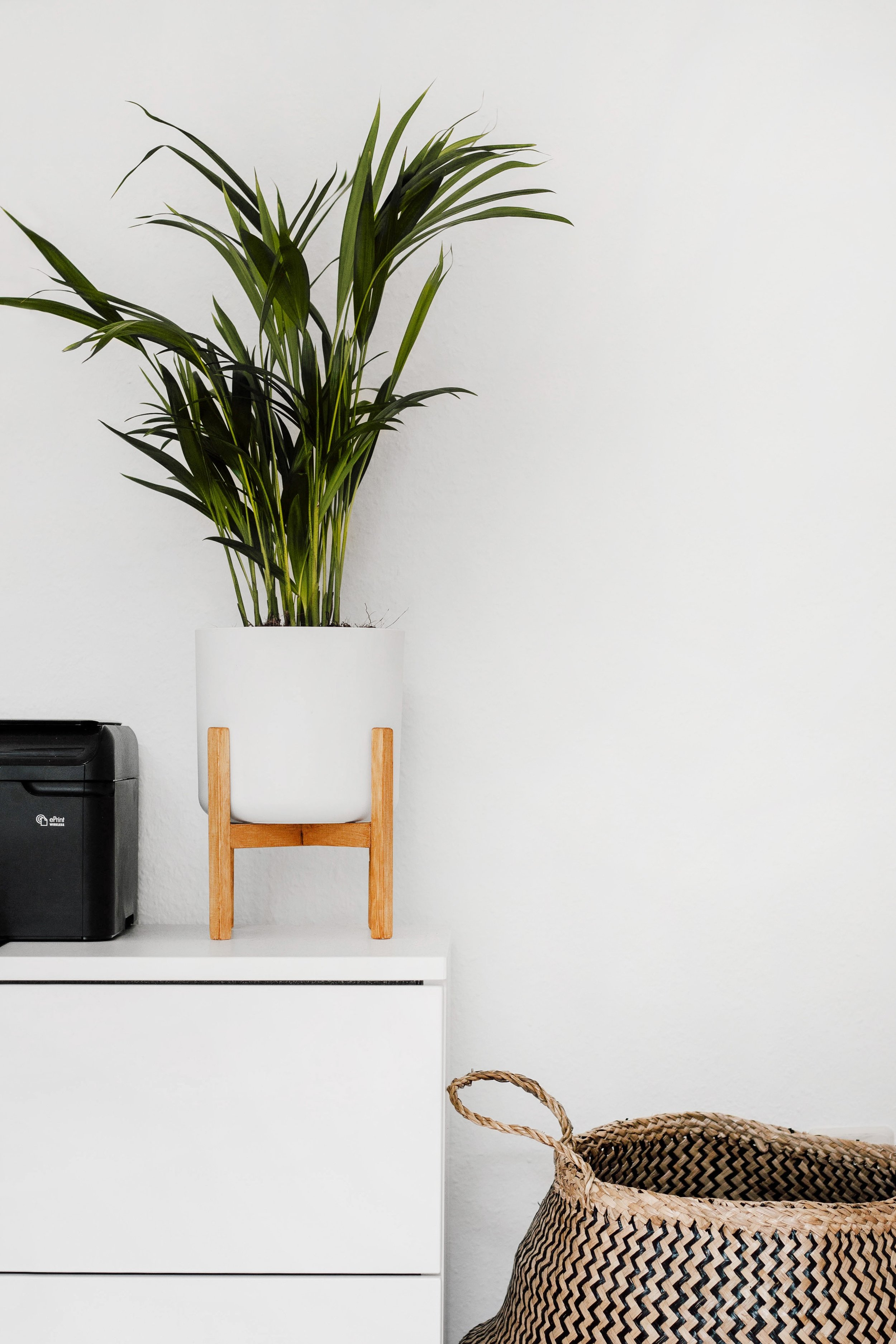home design photos