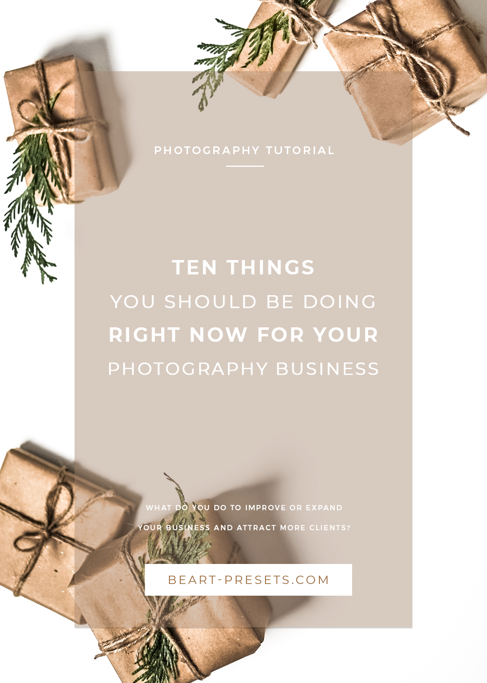 10 THINGS  YOU SHOULD BE DOING  RIGHT NOW FOR YOUR  PHOTOGRAPHY BUSINESS