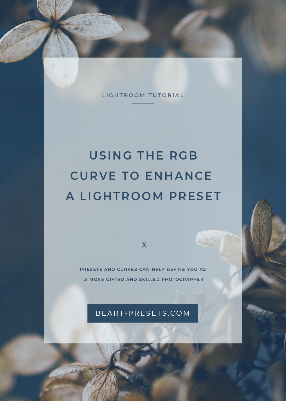 USING THE RGB CURVE TO ENHANCE A LIGHTROOM PRESET