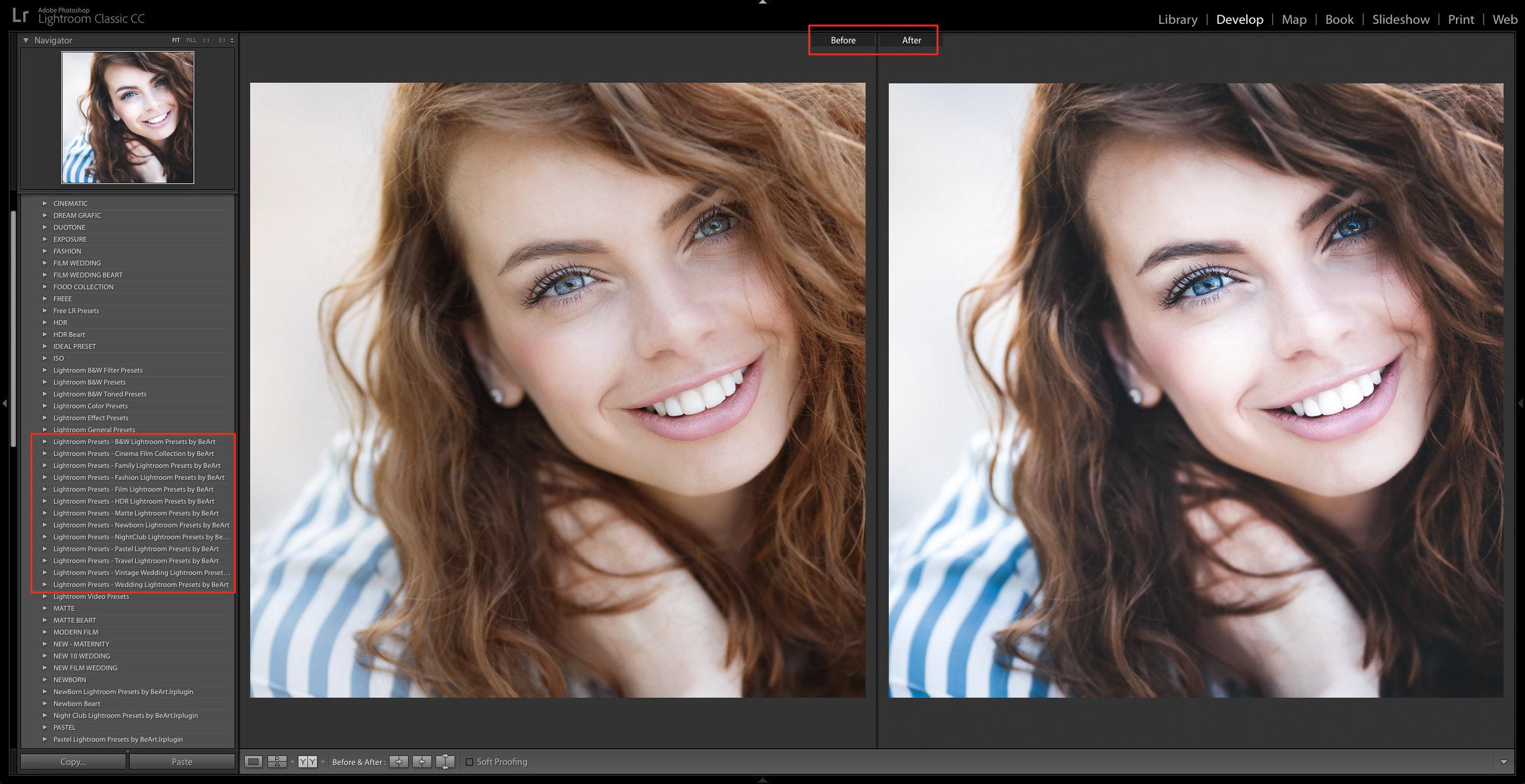 develop lightroom presets