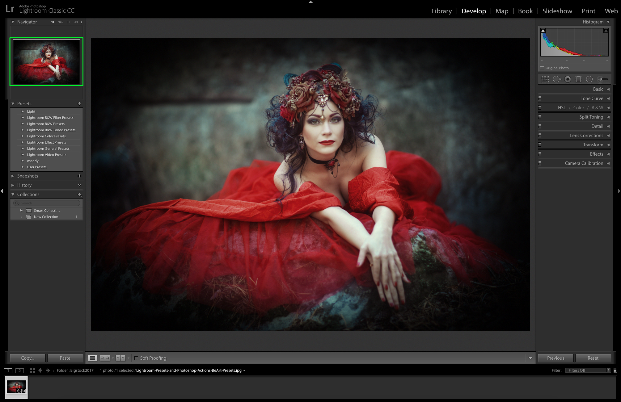 preview image in lightroom