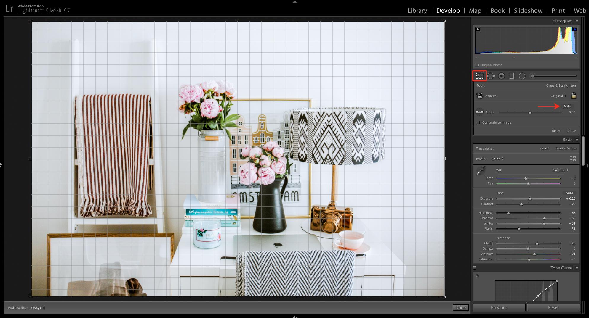 crop overlay in lightroom app