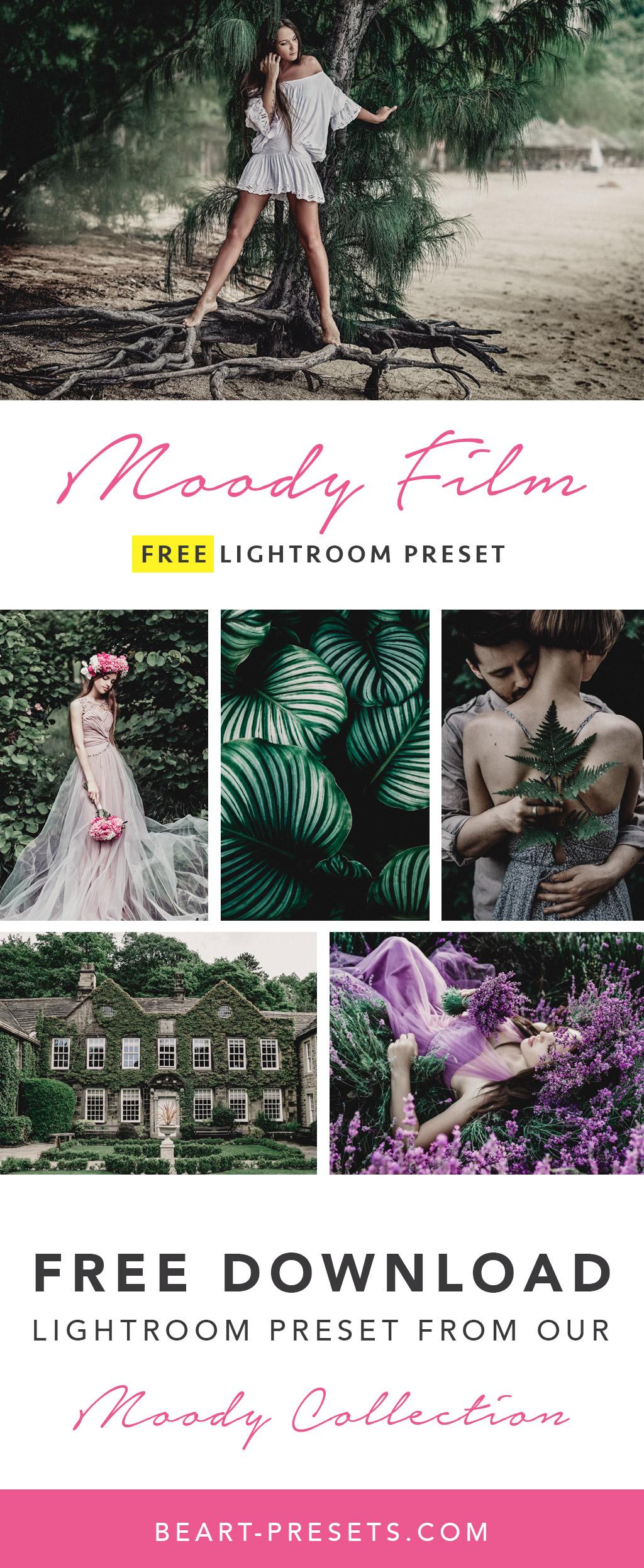 Free Moody Lightroom Preset