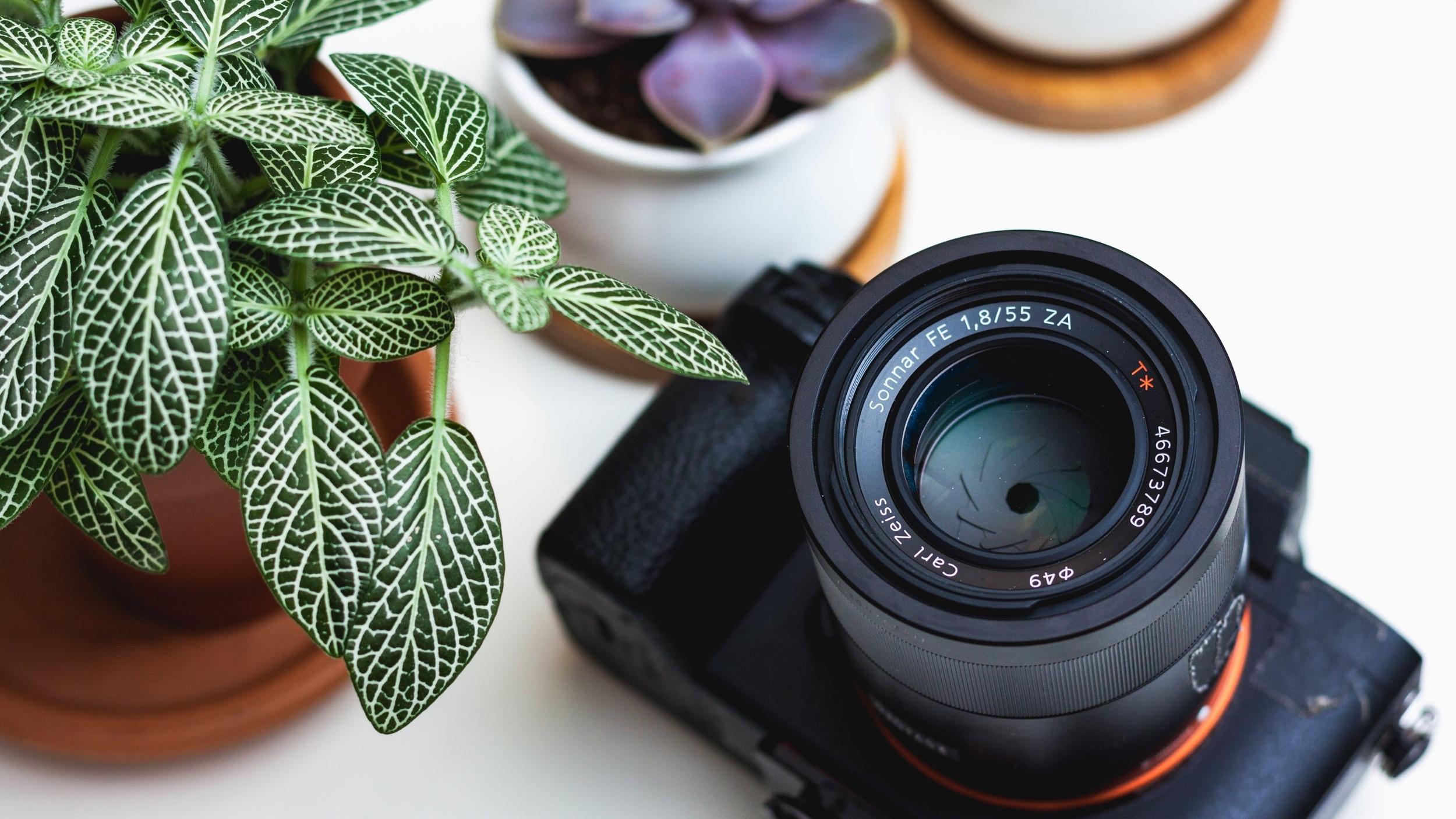 metering mode in your camera