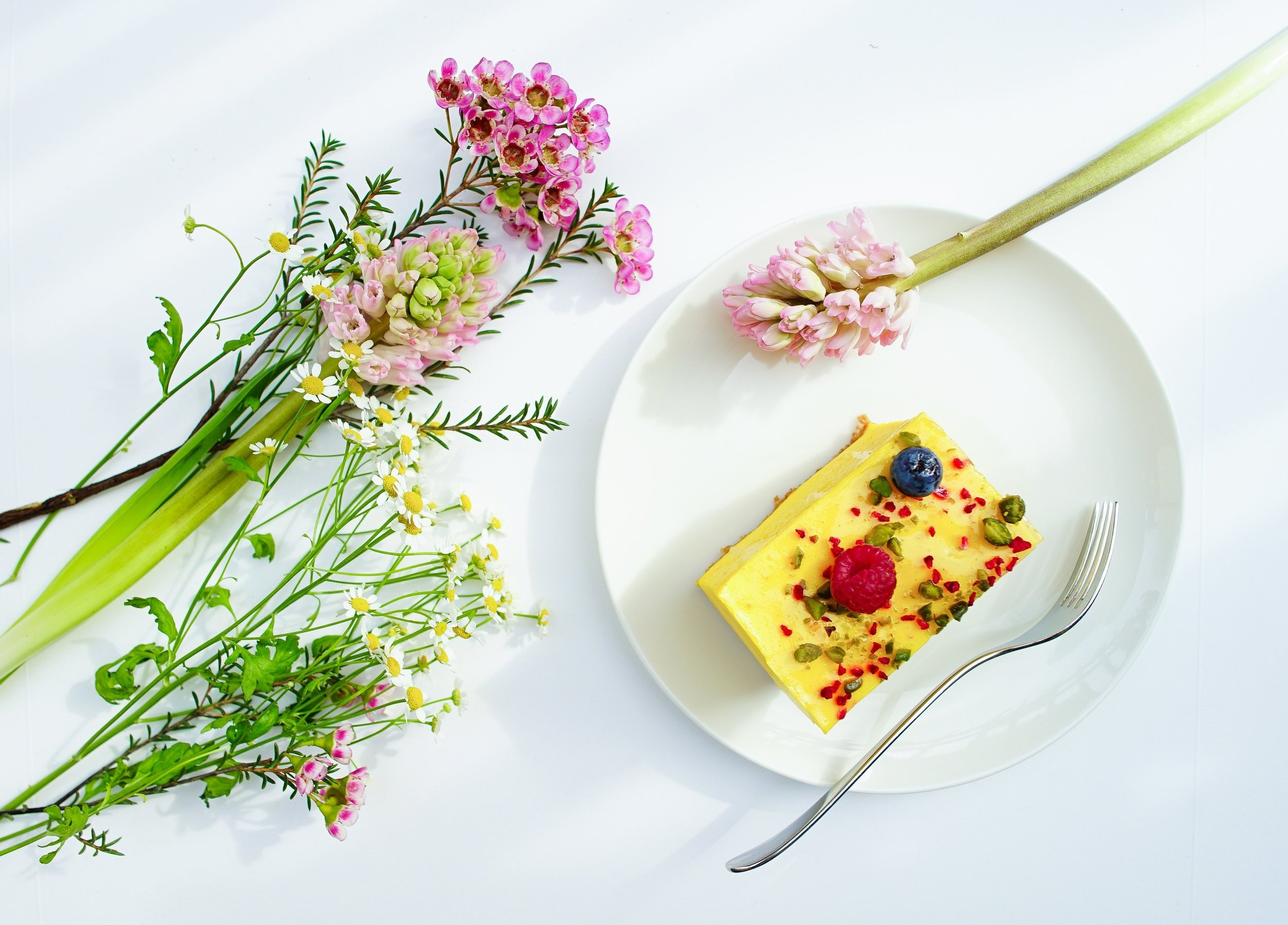 professional food photographers