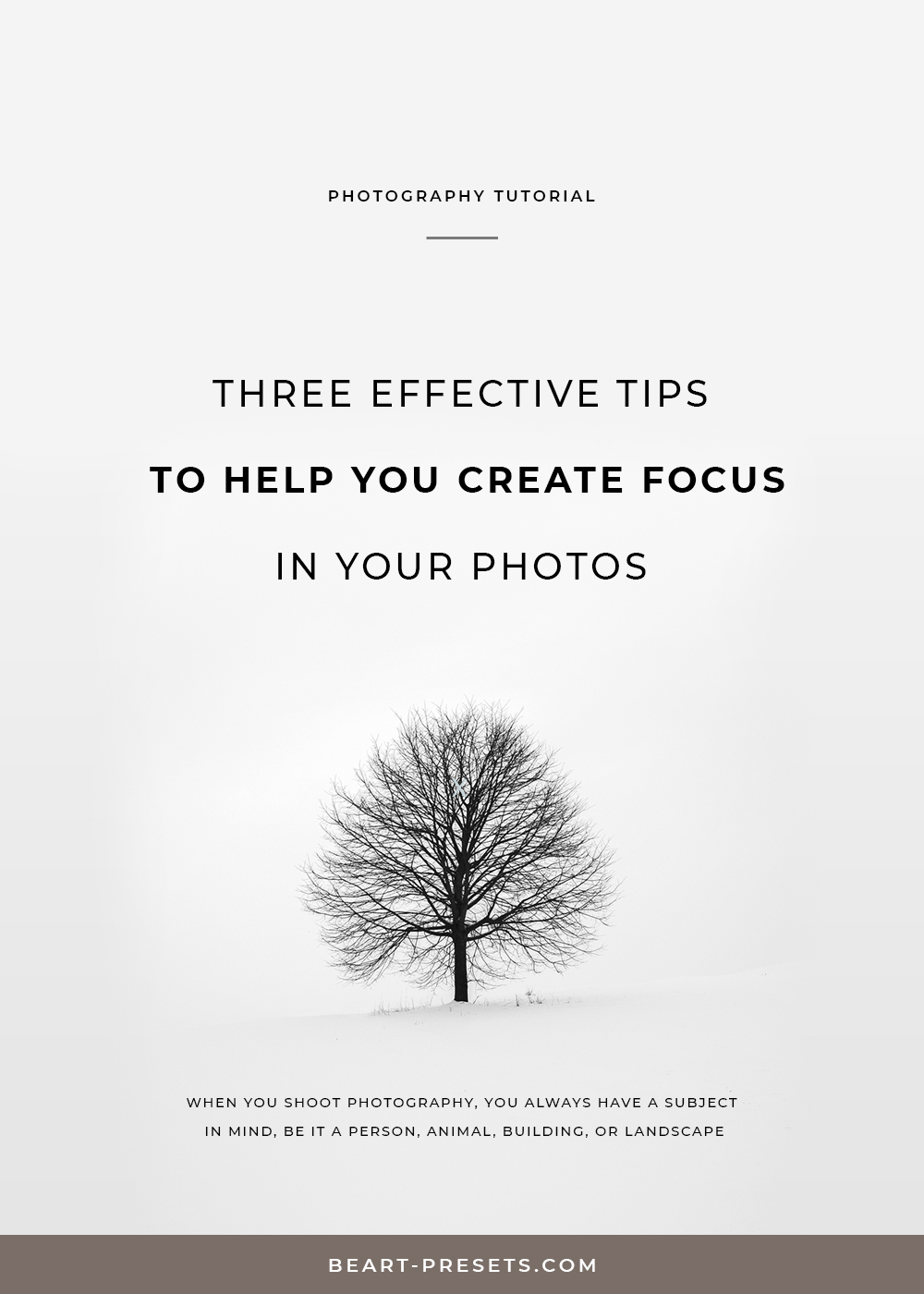 TIPS TO  HELP YOU CREATE FOCUS  IN YOUR PHOTOS