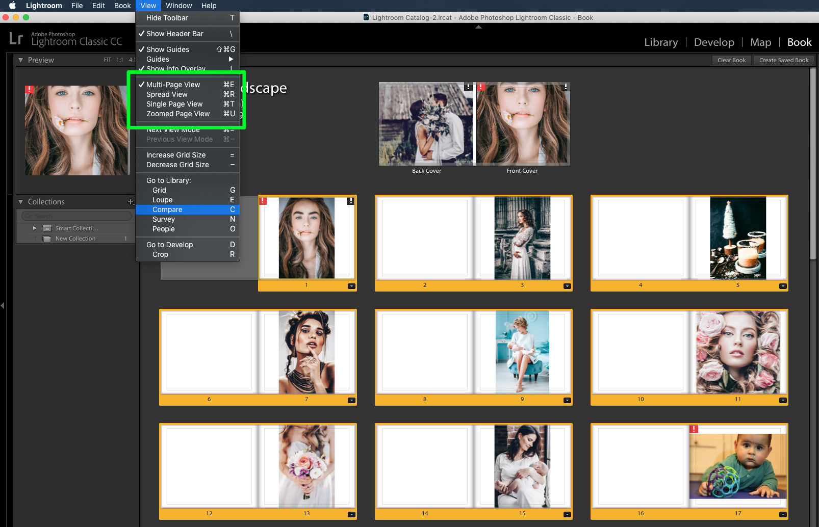 view your book in lightroom