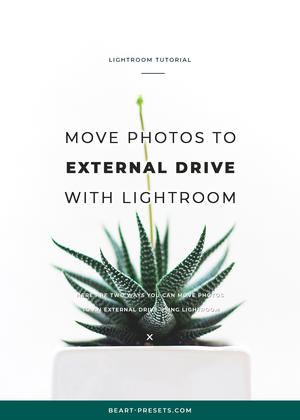 MOVE PHOTOS TO EXTERNAL DRIVE with LIGHTROOM