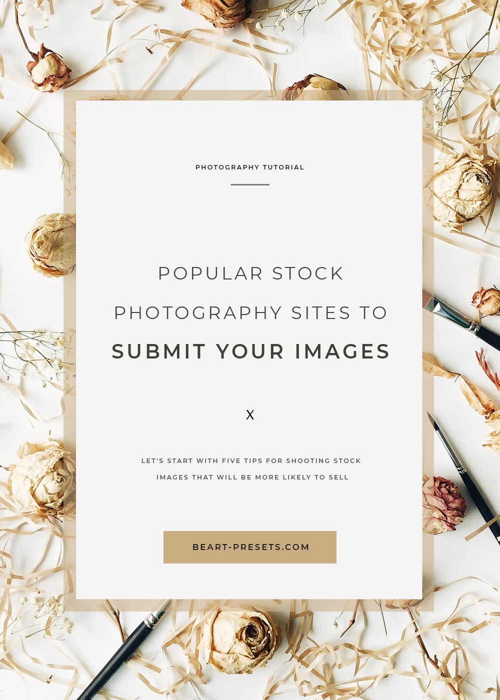 popular stock photography website