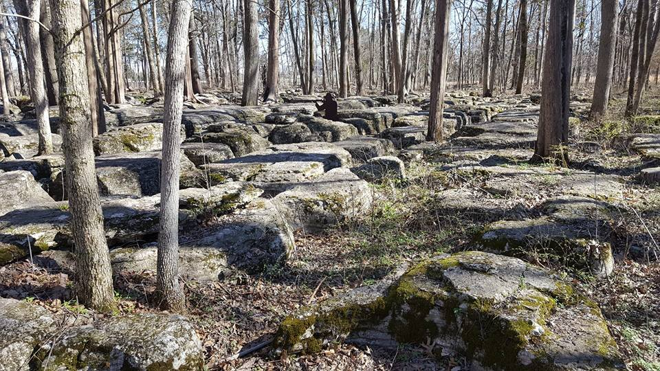 An area known as the Slaughter Pen- Union troops held out here among the limestone outcroppings as long as they could, until Sheridan's troops ran out of ammunition and forced the troops here to retreat along with them.