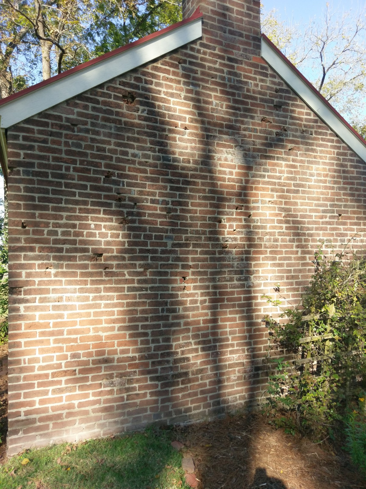 Impact marks on one of the outhouses on the Carter property. Photo: author.