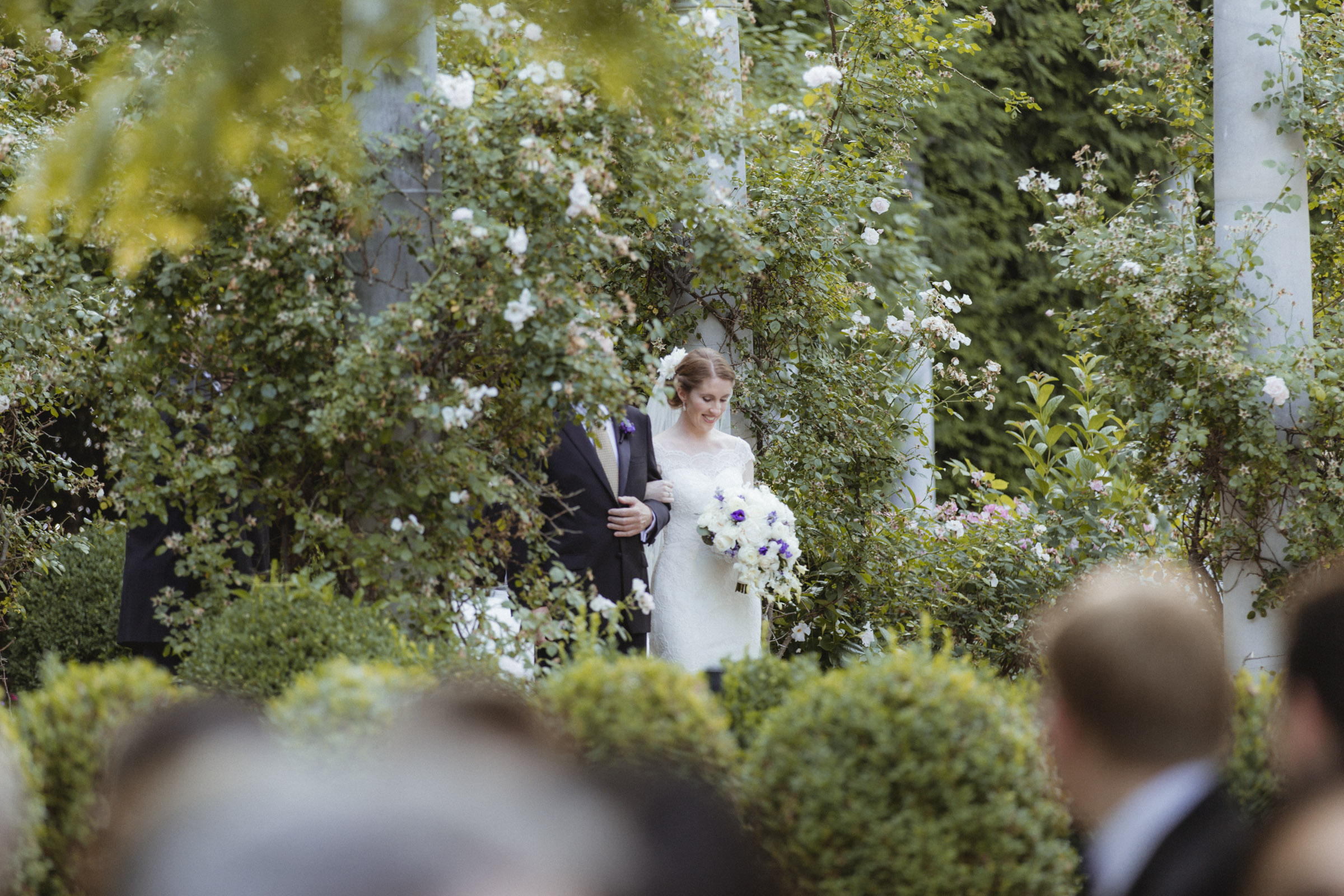 Bride appears in romantic garden before walking down the aisle - Estate at Florentine Gardens wedding - Hudson Valley Wedding - Kelsey & Anish's wedding - Amy Sims Photography