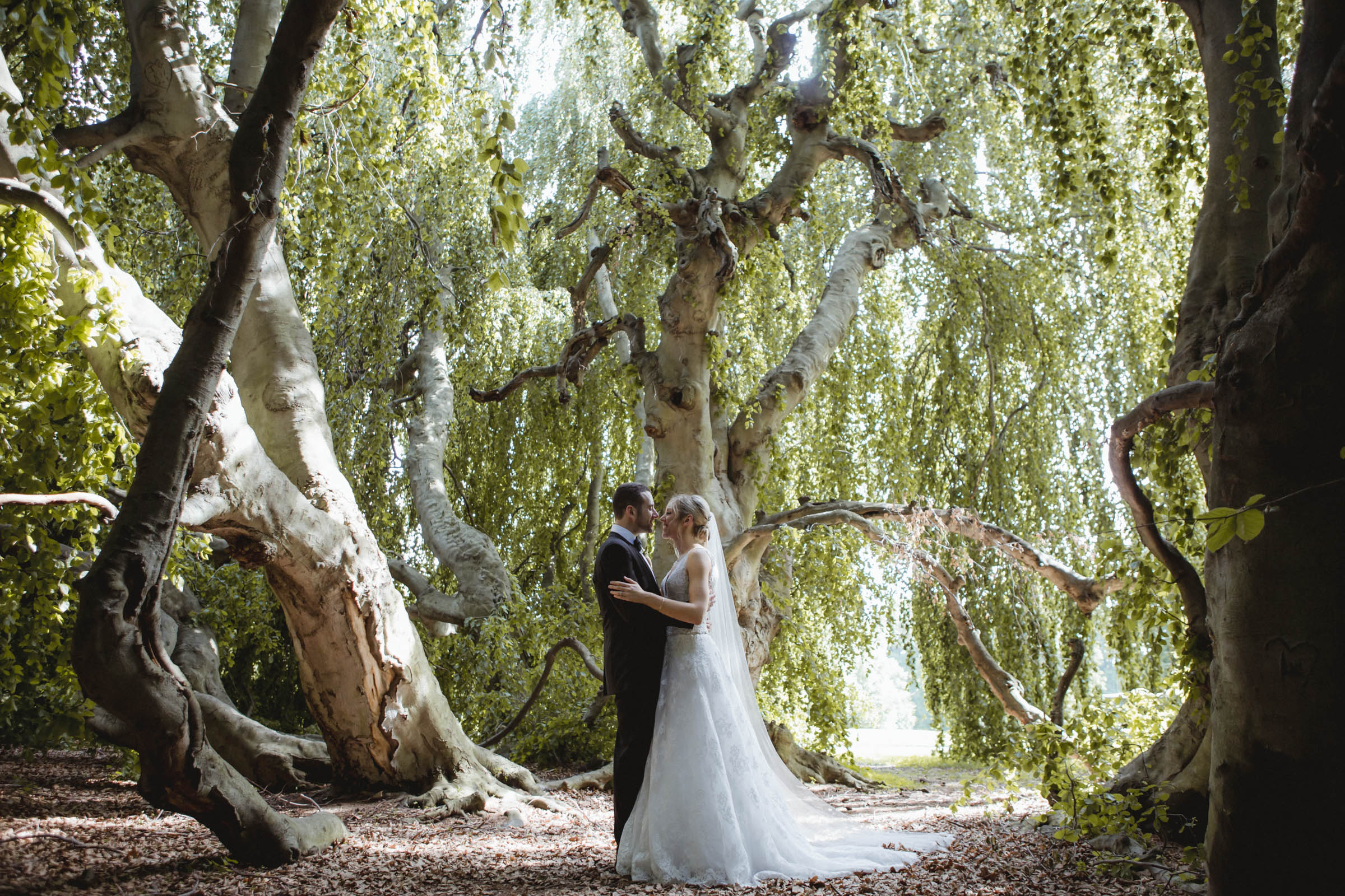 Amy Sims Photography | Bride and Groom have an intimate moment beneath a canopy of trees | Lyndhurst Mansion Wedding | Hudson Valley wedding photographer | Westchester wedding photographer