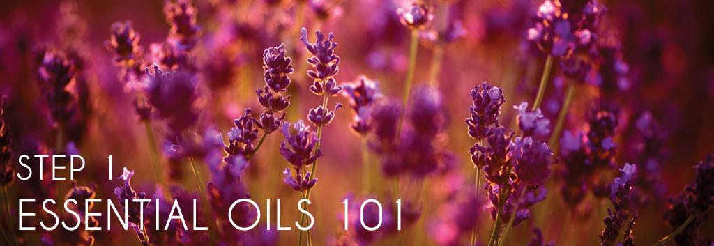 Essential Oils 101 Page Header.jpg