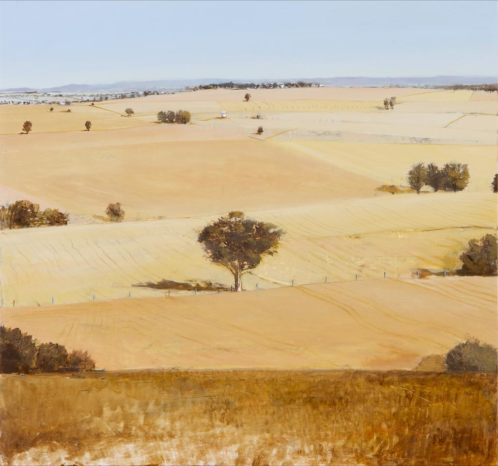 _I Goodacre plains.jpg