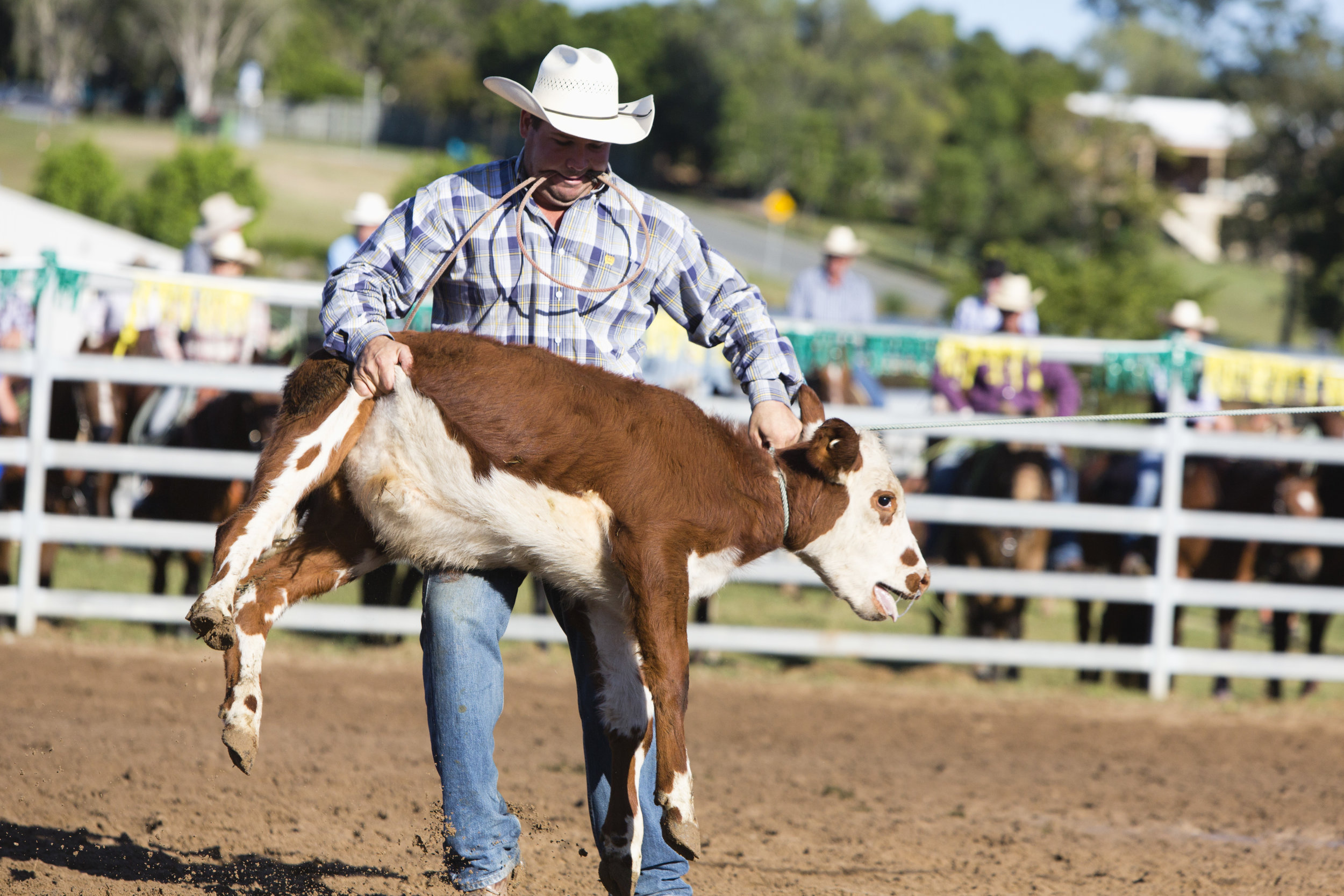 dayboro.rodeo.april30.2017-0014.jpg