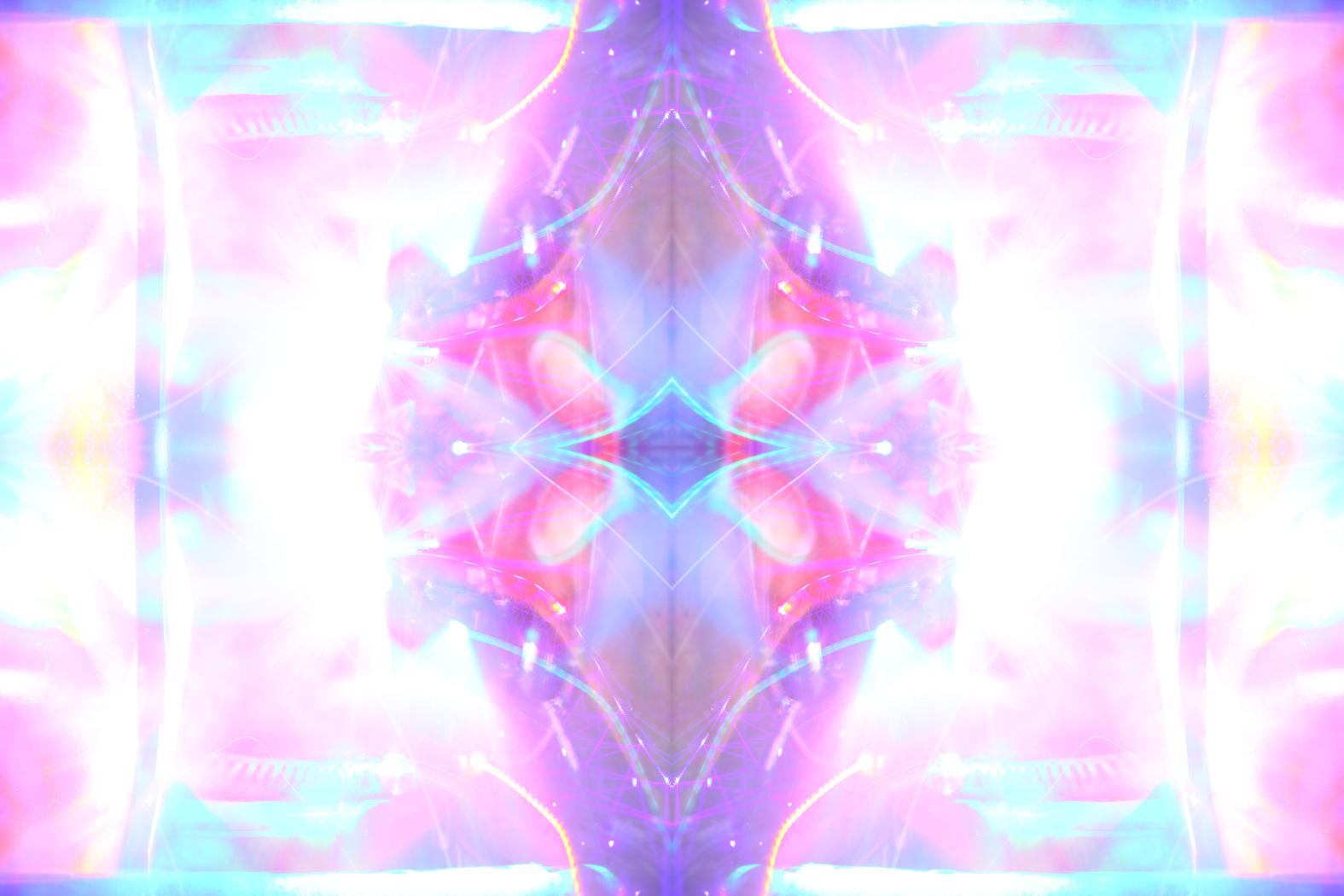 Matt Huppatz,  Hibiscus,  2015. Diasec mounted print. 56 x 85 cm. Courtesy of the artist.
