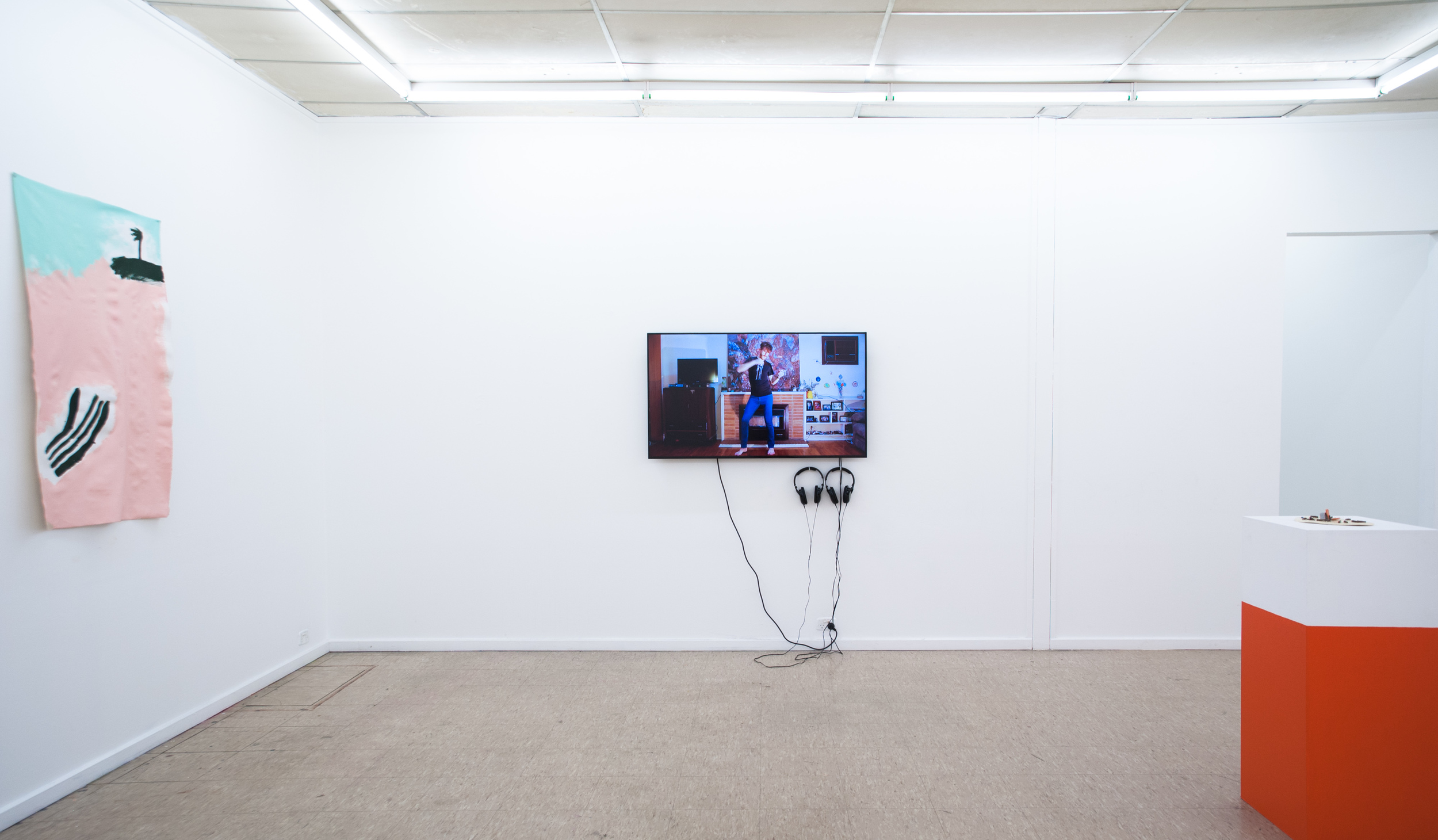 Leisure , 2015, installation view feat. Aida Azin, Luke Wilcox, Meg Wilson (L-R), Fontanelle, photography by Lara Merrington.