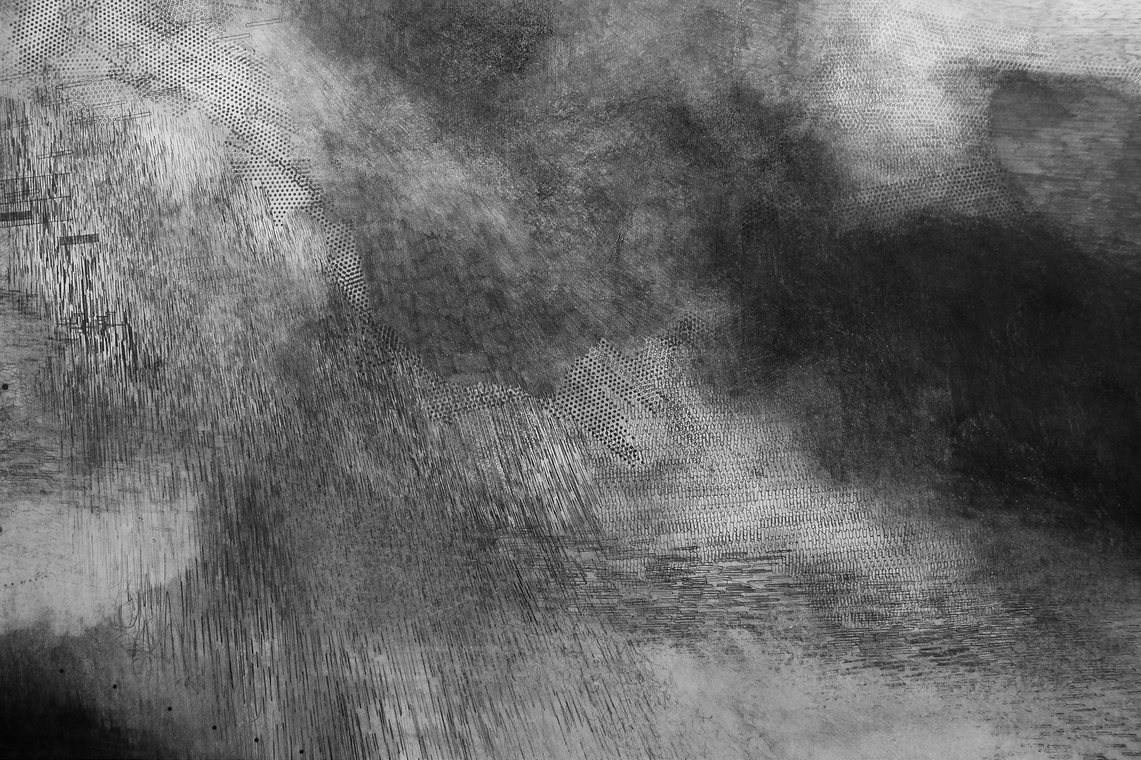 Emma McNally,  Choral Field 9 , 2014 (detail), graphite on paper, 215 x 304 cm. Courtesy the artist.