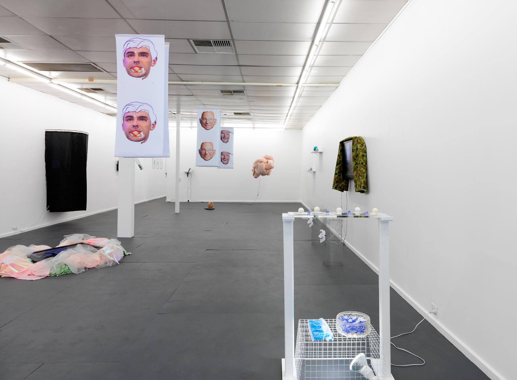 Alterior Motive , Mia van den Bos and Ashleigh D'Antonio, installation view, Fontanelle Gallery, Adelaide 2016. Photography by Grant Hancock.