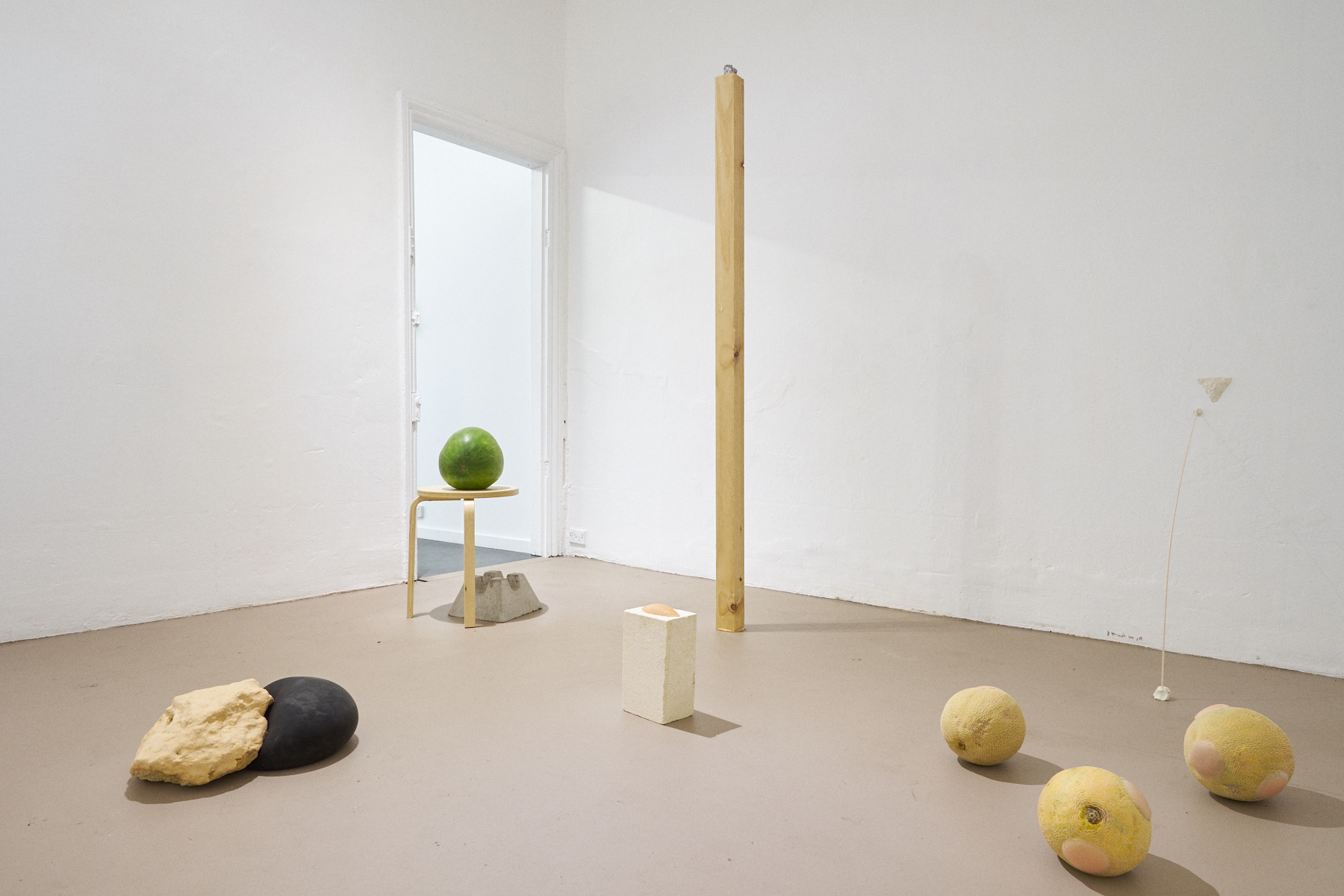 Grace Marlow,  not , installation view FELTspace Gallery, Adelaide, mixed media, 2016. Photography by Christopher Arblaster.