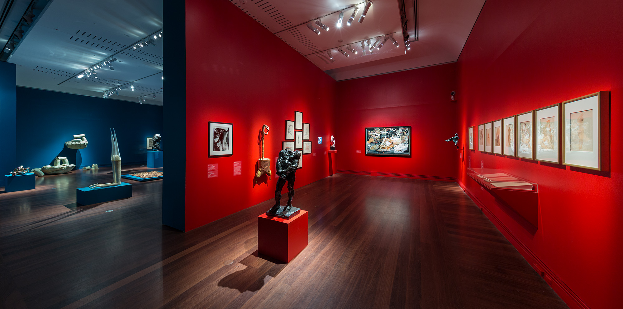 Installation view  Versus Rodin: bodies across space and time , Art Gallery of South Australia, 2017, viewable:  The fragmented body, The erotic body.