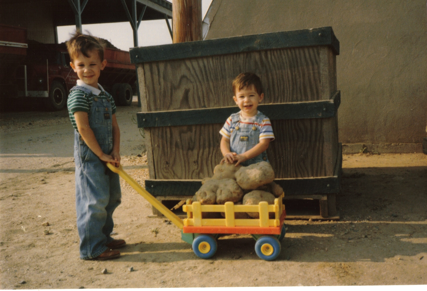John Jr and brother George with their potato crop in 1986