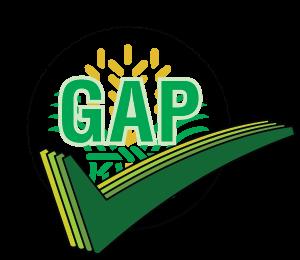 GAP-Logo-300x260.png