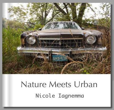 Nature Meets Urban