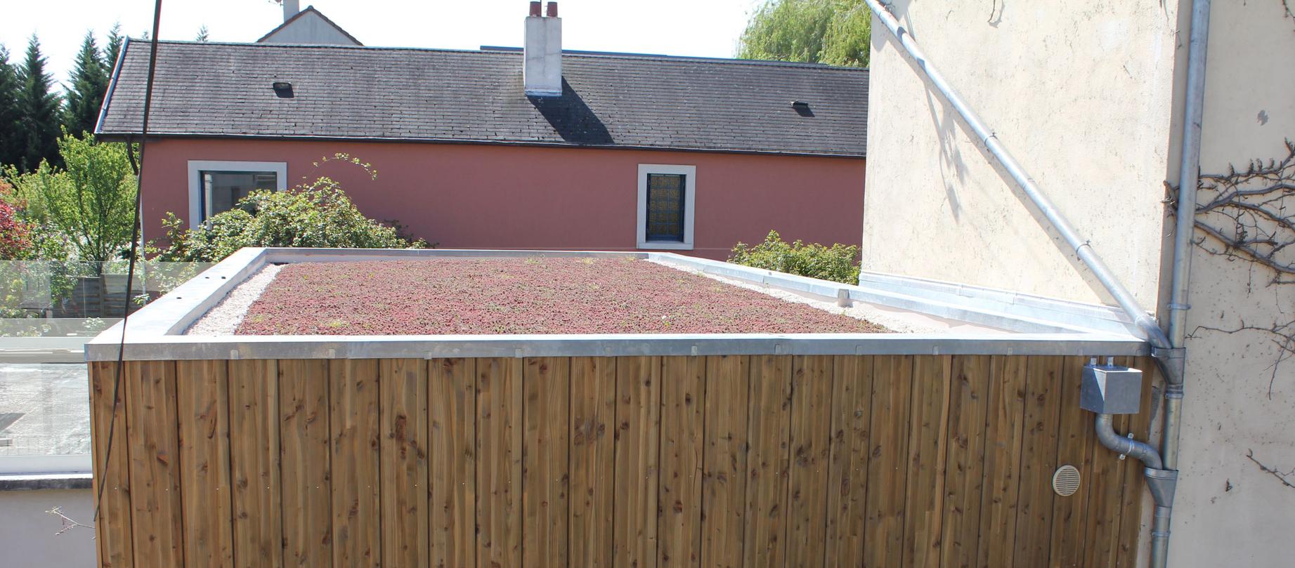 06_toiture vegetalisee.JPG