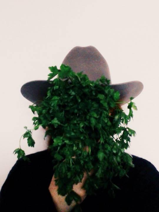 parsleysmall.jpg