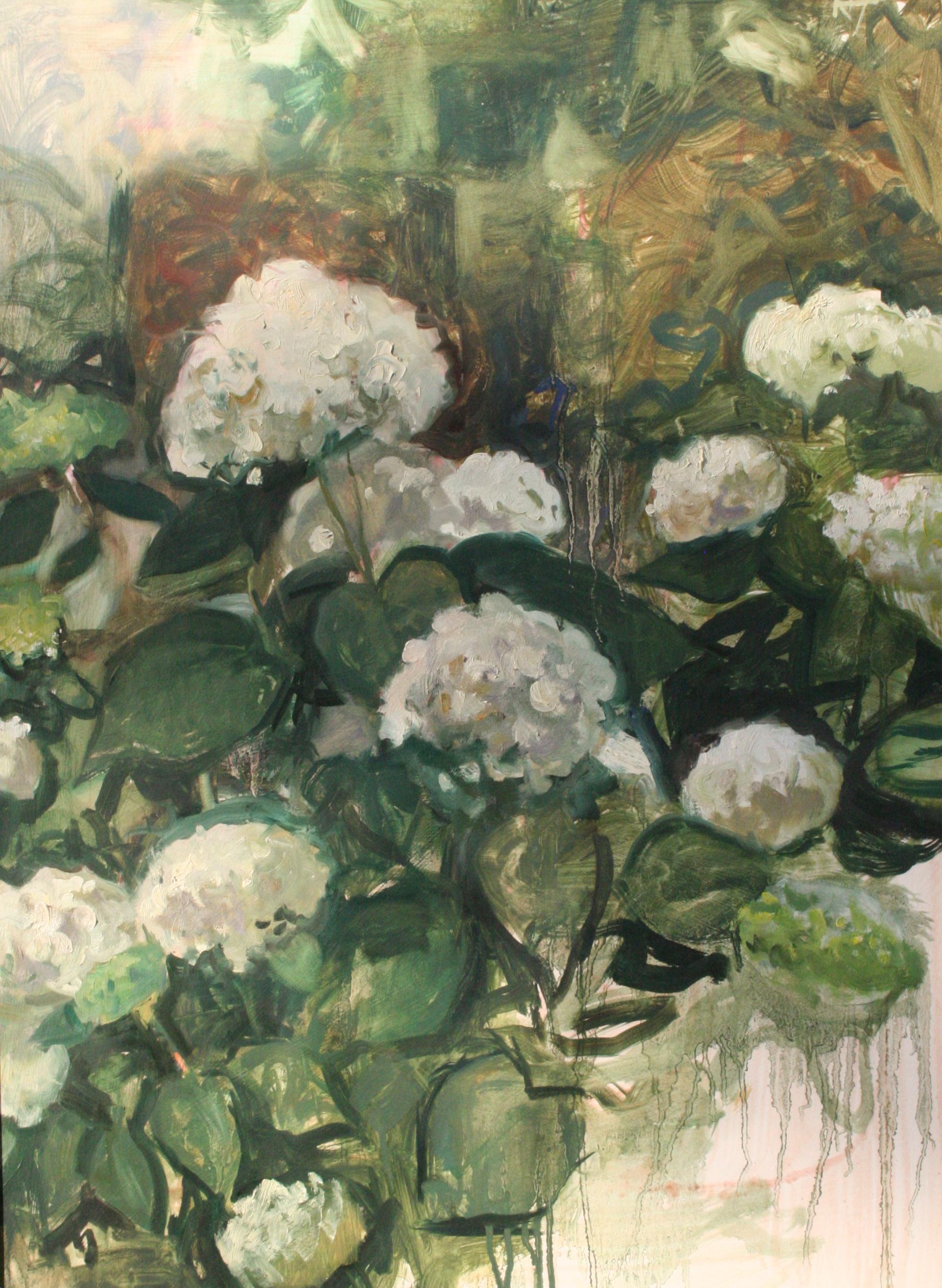 Hydrangeas, Oil on paper, mounted on board, 22X30