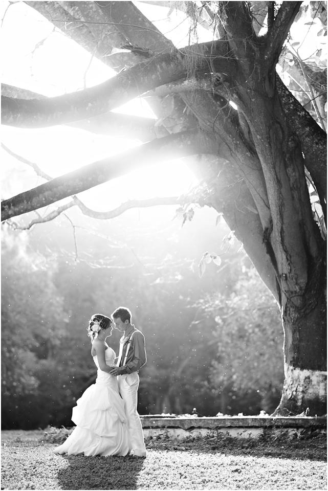 jamaica-wedding-1.png